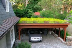 I love a green roof!