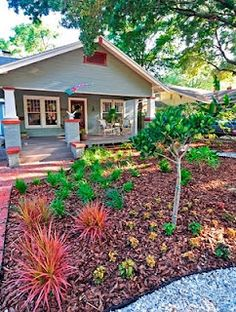 beach cottage mulched yard drought tolerant gardenlandscaping ideasbackyard - Front Yard Cottage Garden Ideas
