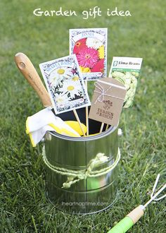 Gardening Gift... great for Mother's Day if Mom's a gardener!  How about herb seeds or sprouts for the cooking Mom?