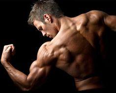 Back and Biceps Workout Program for Huge Gains