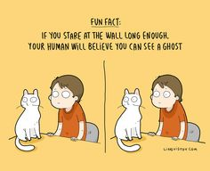 The Reality Of Having A Cat That I Captured In 29 Illustrations (New Pics)