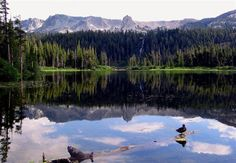 Mammoth Lakes in the summer - great family vacation spot.  Ahhhh.