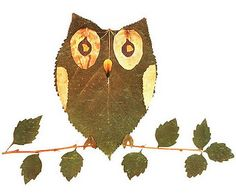 My Owl Barn: Look What I Did With a Leaf!