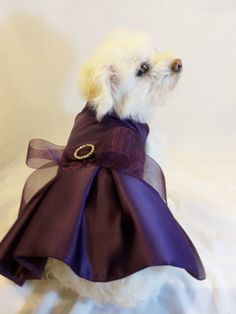 Custom Bridesmaid Dog Dress Shown In Plum By Rockindogs Order Yours Today And I Can Match Your Wedding Colors It Looks Just Like Pippa Thanks Patty