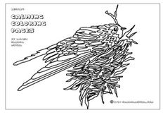 Spring Coloring Page - Nesting Flight Patterns, Spring Coloring Pages, Different Perspectives, Create Image, Birds Eye View, Calming, Hand Drawn, How To Draw Hands, Artist