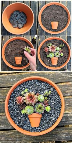 Fairy Garden Pots, Dish Garden, Garden Yard Ideas, Diy Garden Projects, Garden Crafts, Succulent Gardening, Cacti And Succulents, Planting Succulents, Planting Flowers