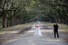 Wormsloe (Plantation), Savannah Videographer from Savannah Wedding Coop