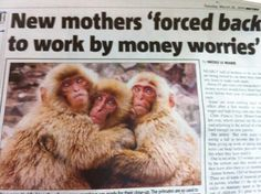 Worst newspaper editing: New mothers