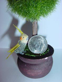 OOAK Dollhouse Miniature Pet Grey Cockatiel. $24.99, via Etsy.