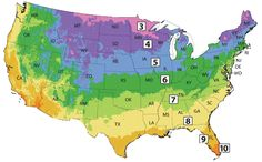 USDA Plant Hardiness Zone Finder  Michigan Bulb Co  Best place to find plants!