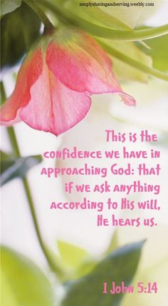 1 John 5:14  This is the confidence we have in approaching God: that if we ask anything according to His will, He hears us.