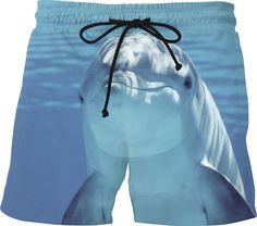 Check out my new product https://www.rageon.com/products/cute-dolphin-1 on RageOn!