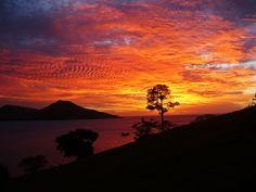 Ein unvergesslicher Sonnenuntergang auf den Fidschis #fiji #fidschi #sunset #sunsetbeach #romantisch #sonnenuntergang #paradies #urlaubimparadies #reisen #traumreise #natur