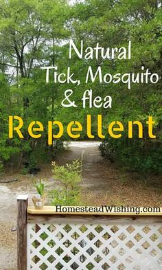 Looking for a natural tick, mosquito, and flea repellent? Homemade repellent. Tick repellent. Mosquito repellent. Flea repellent.