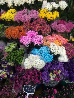 Me encanto las flores. Afuera del mercado edificio están tiendas con flores. Hay muchas tipas con colores brillas y que huele muy bien. Las personas aquí fue muy simpático.