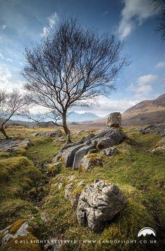 A bit of repose on the Isle of Skye landscape, Scotland.