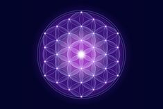 Flower of Life Mandalas And Their Meaning When it comes to understanding the mysteries that science hasn't solved yet, symbols like the Flower of Life help us contemplate the universe and everything that lies ahead of us. Find out how this symbol evolved and became