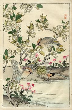 Waxwing, Crab Apple. Bairei Flower and Bird Prints 1899.