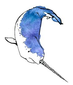 watercolor narwhal