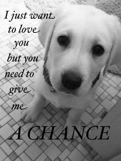 "This is why we gave Max the middle name of Chance. Becuase he so deserved his ""chance"".... <3"