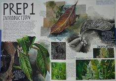 A Level Art Sketchbook Layout, Gcse Art Sketchbook, Sketchbook Ideas, Sketchbooks, A Level Textiles Sketchbook, Natural Forms Gcse, Natural Form Art, Kunst Portfolio, Decay Art
