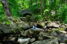 Ken Lockwood Gorge doesn't nearly get the attention it deserves. Located between Califon and High Bridge, the gorge is a 260-acre designated wildlife management area offering spectacular river and woodland views.
