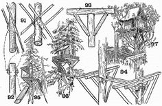 Tree-top houses (construction details) ~ I'm on the record for not approving of Tree houses -- the Indian in me says they're disrespectful toward and cause undue suffering, stress, to live trees. Treehouse Cabins, Building A Treehouse, Treehouses, Tree House Plans, Tree House Designs, Pole Barn Homes, Forest House, Tree Tops, Wilderness Survival