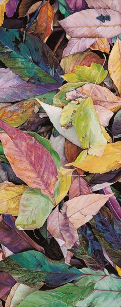 ▨texturas - Dan Bacich-Stream of Leaves, painting Watercolor Leaves, Watercolor Paintings, Leaf Paintings, Watercolors, Silk Painting, Painting & Drawing, Painting Leaves Acrylic, Leaf Drawing, Autumn Painting