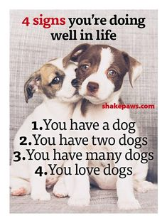 We have 4 dogs - 2 labs and 2 rat terriers - and yes, we do love dogs!