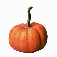 How to Grow a Small Pumpkin in a Pot