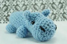 Random assortment: Hippo