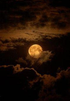 Gorgeous Harvest Moon Photos That Will Make You Love Autumn Moon Moon, Moon Art, Full Moon, Stars Night, Stars And Moon, Moon Beauty, Night Photography, Nature Photography, Moonlight Photography