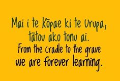 From the cradle to the grave, we are forever learning. - Maori proverb new zealand inigenous people