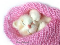 Купить Валяная игрушка кошка Аришка.  Игрушка из шерсти. - белый, рыжий, пушистый, пушистый котенок