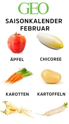 dieses-obst-und-gemuse-hat-saison-im-februar/ - The world's most private search engine Paleo Food List, Food Lists, Paleo Diet, Paleo Recipes, Superfood, How To Clean Humidifier, Flu Like Symptoms, Seafood Market, Yoga For Flexibility
