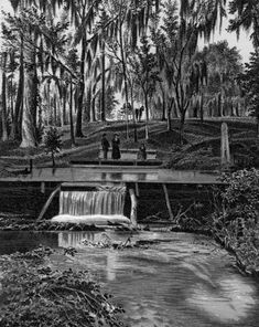 Florida Memory - Small waterfall at Tululu Springs in Orange Park. Florida Springs, Orange Park, Small Waterfall, Healing, Image, Therapy, Recovery