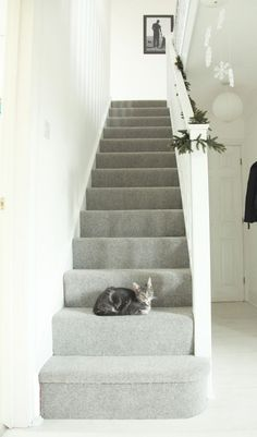 Most up-to-date Pictures Grey Carpet lounge Suggestions Deciding on the best carpet colour can be quite a daunting process. Grey Stair Carpet, Carpet Diy, Grey Carpet Bedroom, Hallway Carpet, White Carpet, Carpet Stairs, Carpet Ideas, Carpet Decor, Wall Carpet