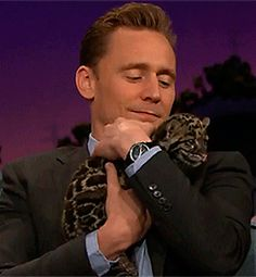 """@LadyGrayse all we need to finish out a Monday! @TWHiddleston and cats!"" Video: https://twitter.com/whipclip/status/724834962516676608"