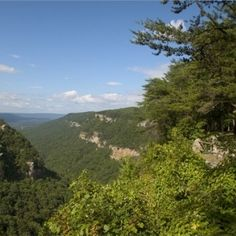Cloudland Canyon State Park offers guided hikes every Wednesday at 12pm!