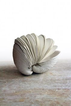 An ode to the Salish Sea.... from a butter clam shell (Saxidomus giganteus) discovered on the ocean floor off the coast of Orcas Island, a beautiful and sculptural clam shell hand bound book.