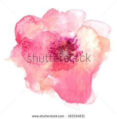 Single Pink and Orange Watercolor Flower - stock photo