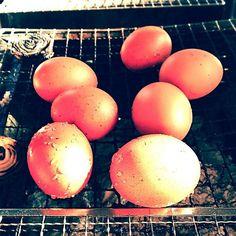 『ソレダメ!』で紹介。ゆで卵よりもおいしい「焼き卵」っていったい何? - macaroni