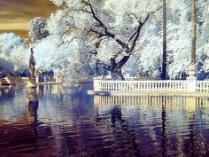 0386 Parc Ribalta (Infrared) by Quim Granell on 500px