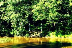 "ministry.of.apathy: ""#выборг #лето #весна #осень #замок #прогулка #путешествие #река #улица #пейзаж #природа #город #одиночество #грусть #печаль #vyborg #vyborgcastle #fall #autumn #summer #spring #castle #walk #journey #travel #street #river #landscape #nature #монрепо"""