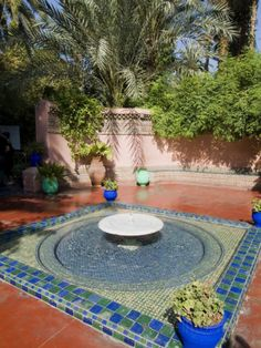 Poster:  24 x 32  $24 until 12/2    Jardin Majorelle, Marrakech, Morocco, North Africa, Africa Photographic Print by Ethel Davies at AllPosters.com