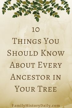 5 free genealogy websites for family history and ancestry research. Great for… 5 free genealogy websites for family history and ancestry research. Genealogy Websites, Genealogy Forms, Genealogy Research, Family Genealogy, Free Genealogy Records, Genealogy Quotes, Genealogy Chart, Family Roots, Family Guy
