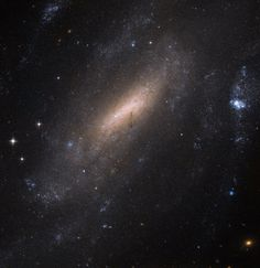 "Hubble ""Crane-s"" in for a Closer Look at a Galaxy Follow @GalaxyCase if you love Image of the day by NASA #imageoftheday"