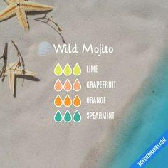 Wild Mojito diffuser blend