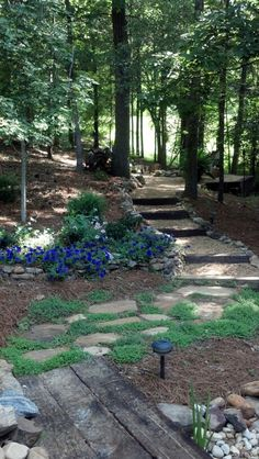 My garden...pathway to fire pit.