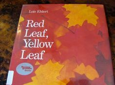 Red Leaf, Yellow Leaf by Lois Ehlert.  Learning about trees and exploring in the woods. With linky to many other Ehlert books.